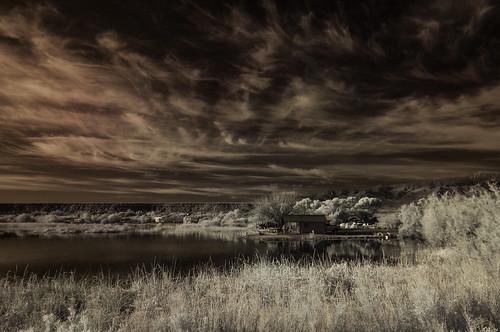 arizona sky lake nature clouds ir highcontrast infrared infraredphotography roperlakestatepark convertedinfraredcamera