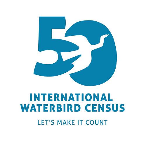 IWC50 Logo_Blue_rgb