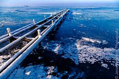Steinhuder Meer im Winter