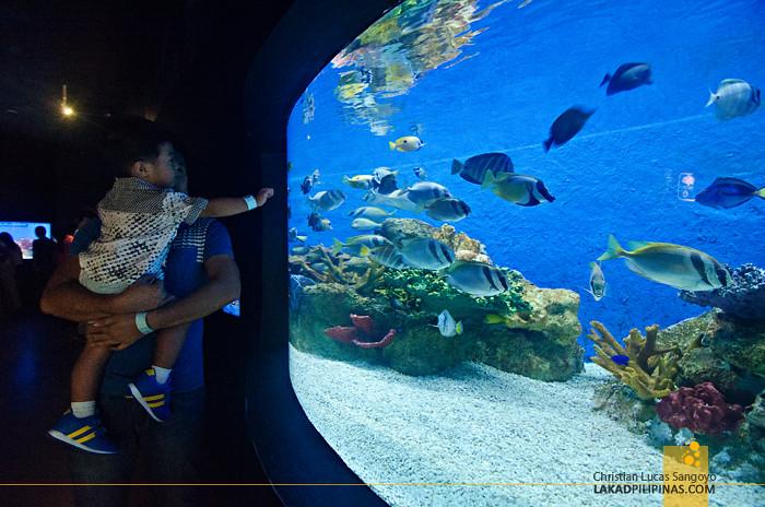 Manila Ocean Park Bahura