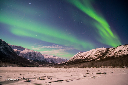 Northern Light in Vargfjord