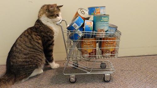 c03-Darwin or Goliath cat food canned