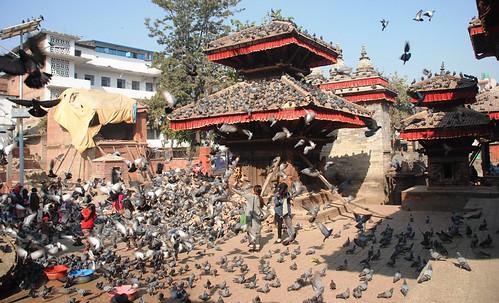 152 Katmandu (48)