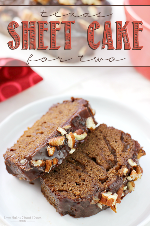 Perfect for when you only need a few servings, this Texas Sheet Cake for Two is quick and easy to make!