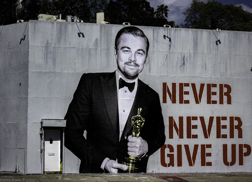 Image result for never never give up leonardo