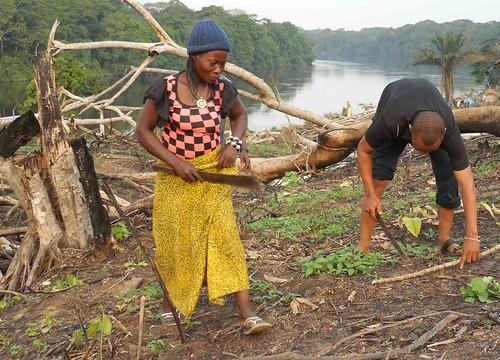 Mama chefitaine planting at bangaliwa