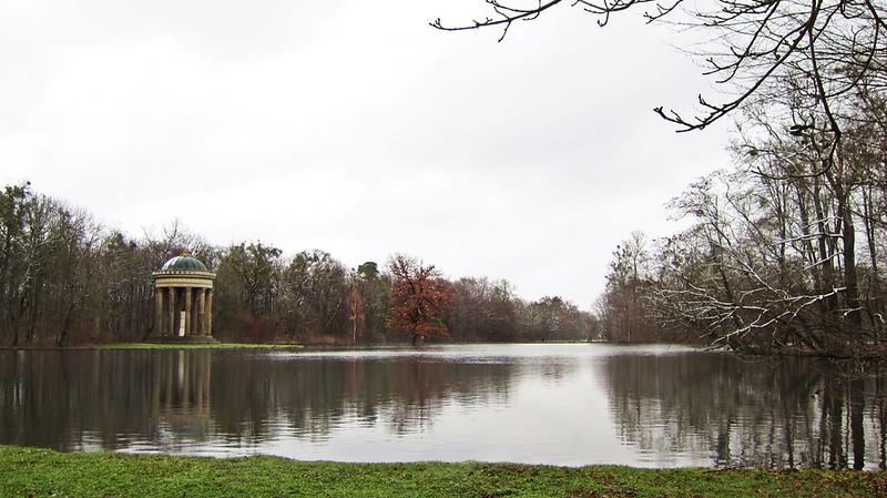 Goldengelchen-Winter in München-Badenburger See und Monopteros im Park Nymphenburg