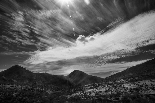 Paleoparque Las Ventas 2015 (02)