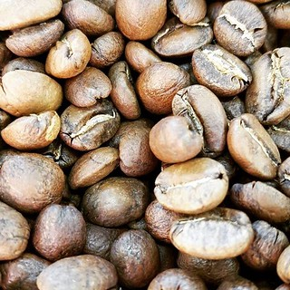 Lots of coffee roasting going on! Delicious Single Origin beans ready for you to pick up this week. Get yours today! #caffedbolla #singleorigin #coffeebeans #slc #coffee #roaster