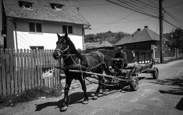 Bran, Roumanie