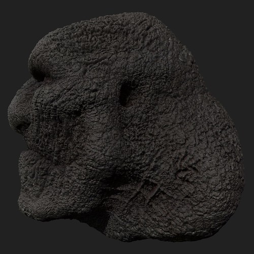 Bemused Troll - 04