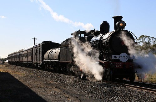 2016-03-19_0942-31-000 3237 on 8S01 at Wyalong