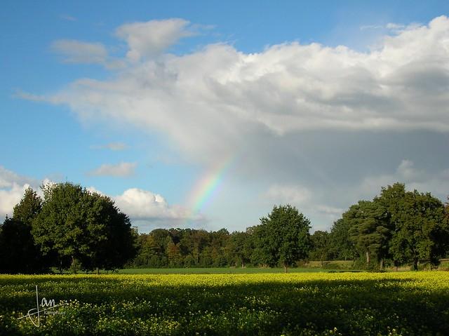Gronau 2005 - regenboog