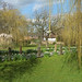 Small photo of Abbots Langley Walk - March 2016 - JPP-3813