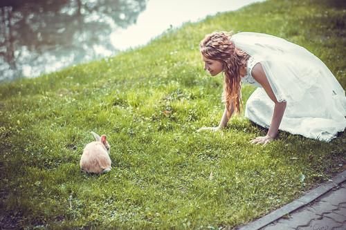 lake rabbit green water bride