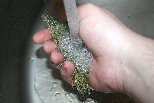 18 - Thymian waschen / Wash thyme