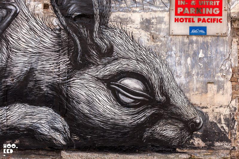 Close up of street artist ROA's animal mural in Ostend, Belgium