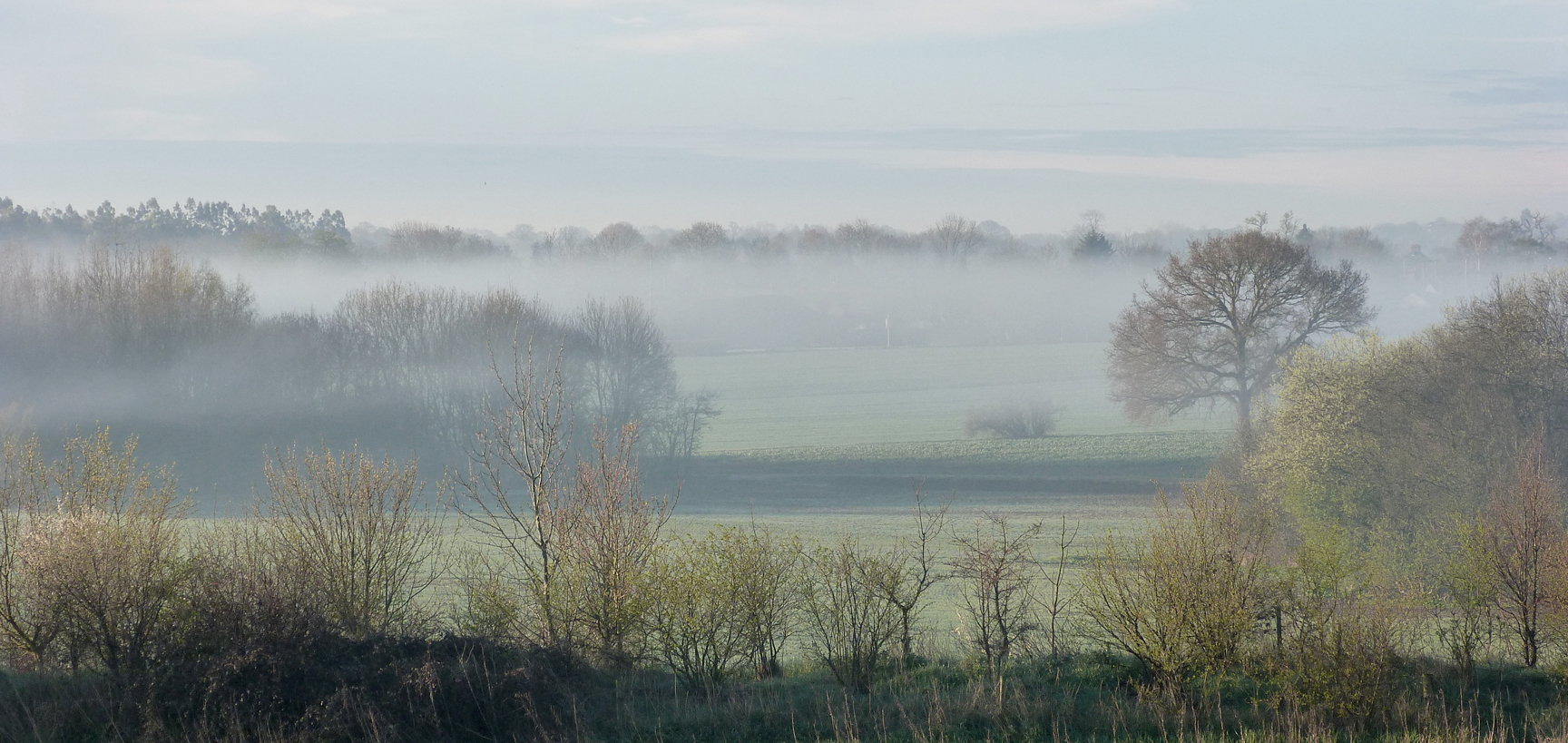 Misty Essex morning