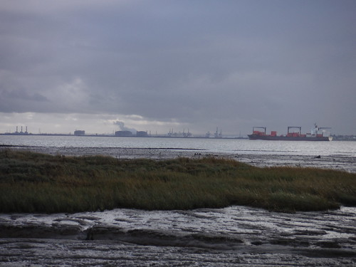 Ships on the Thames & Isle of Grain, from Leigh Beck Marsh