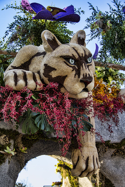 Downey Rose Parade Float 2016