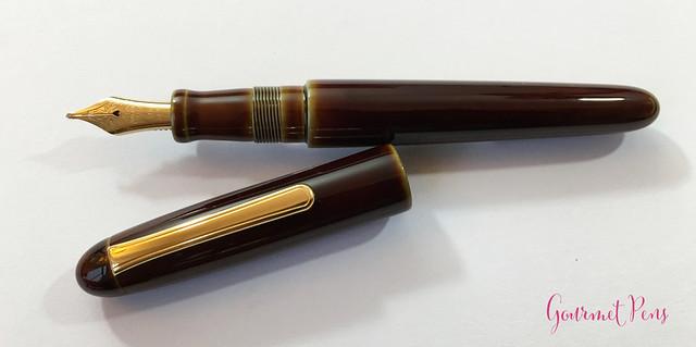 Review Nakaya Cigar Writer Heki Tamenuri Fountain Pen (21)