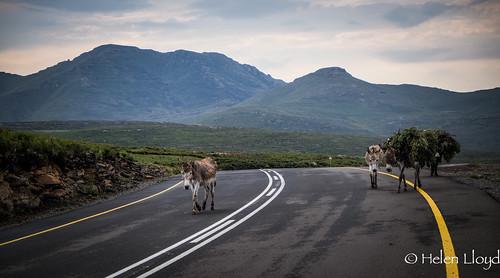 Lesotho - not Ranoch moor