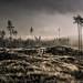 Apocalypse Now - A Scottish Landscape by .Brian Kerr Photography.