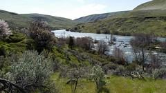 Deschutes State Recreation Area