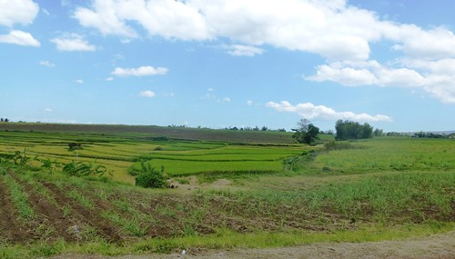 P16-Negros-Bacolod-San Carlos-route (9)