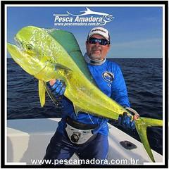 Roald Andretta, mais um dos pescadores mais influentes com um lindo dourado. Foto by Ruy Varella.  #pescaamadora #pesqueesolte #baitcast #fly #pescaesportiva #sportfishing #fishing #flyfishing #fish #bassfishing #bass #angler #anglerapproved #monsterfish