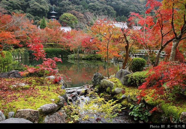 京都-永觀堂052