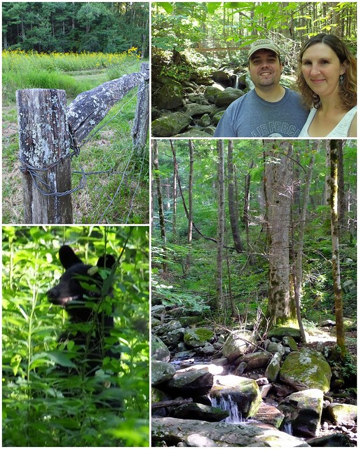 cades cove collage