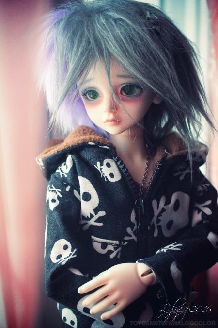 [ Shin - KDF Bory ] Cheshire chaton ? (23/12/2018) - Page 4 26460430650_37010ae0dc_o