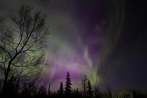Pioneer Peak Aurora
