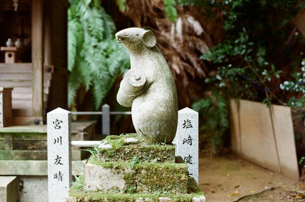 大豐神社 Kyoto / Kodak ColorPlus / Nikon FM2 2015/09/27 三月份的時候有來過一次京都,但是那時候時間很趕,沒有來大豐神社,這裡有兩隻很可愛的老鼠。這次自己在京都待很久,就還是記得要過來這裡拜訪一下。  記得那時候我還是很誠心的許下一樣的願望,後來坐在神社前面的階梯休息一下,這裡很安靜、很舒服。  外面就是銜接哲學之道。  Nikon FM2 Nikon AI Nikkor 50mm f/1.4S Kodak ColorPlus ISO200 0986-0011 Photo by Toomore