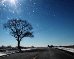 Illinois landscapes 2016