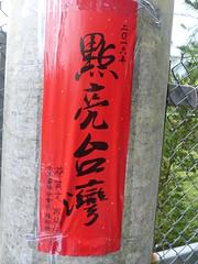 点亮台湾  Taiwan Democratic Progressive Party Slogan -- Set Taiwan Alight