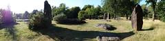 Les alignements des « Pierres Droites » près de Monteneuf - Morbihan - Août 2015 - 15