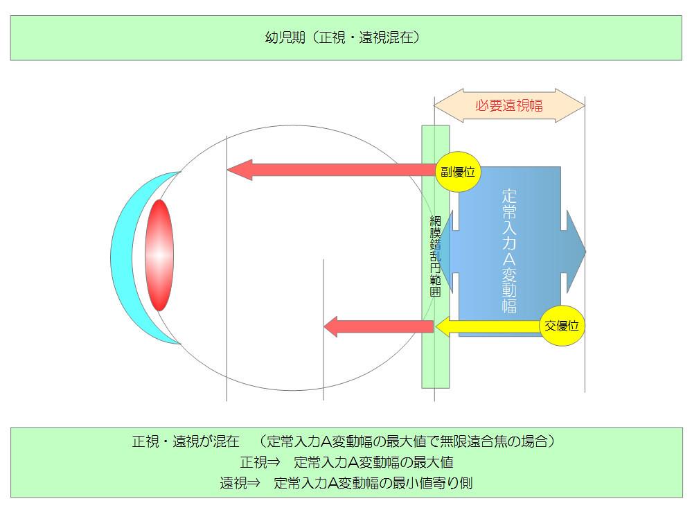視力回復のために知りたい眼のメカニズム|独自まとめその10用02|幼児期(正視・遠視混在)|真・視力回復法|視力回復コア・ポータル