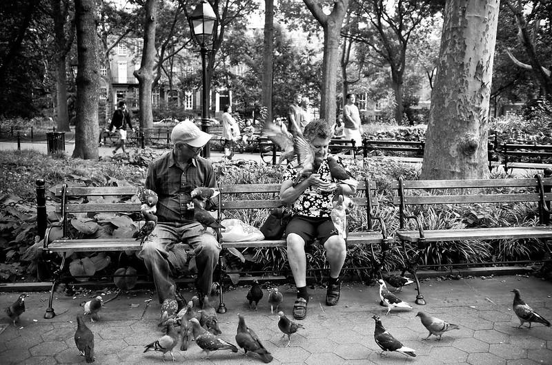 Washington Square Park 2014