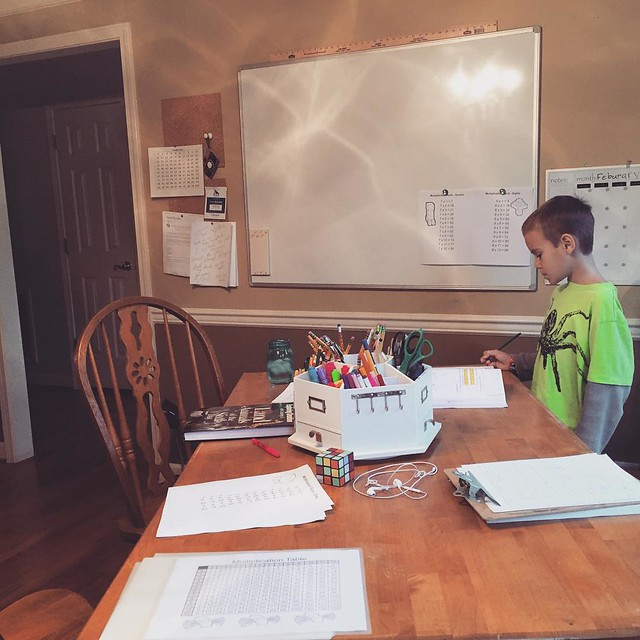 HomeSchool curriculum and what works for our family of 6.