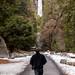 Yosemite by Tom Coates
