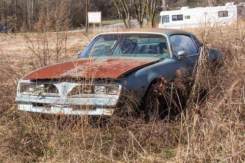 Abandoned car - 1