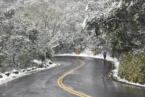 陽明山雪景