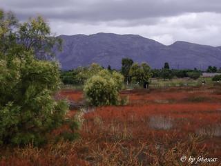Neapoli Lakonias GR