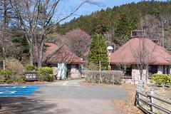 県民の森・森林学習展示館