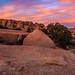 Sunset on the Rocks of Joshua Tree by Bartfett