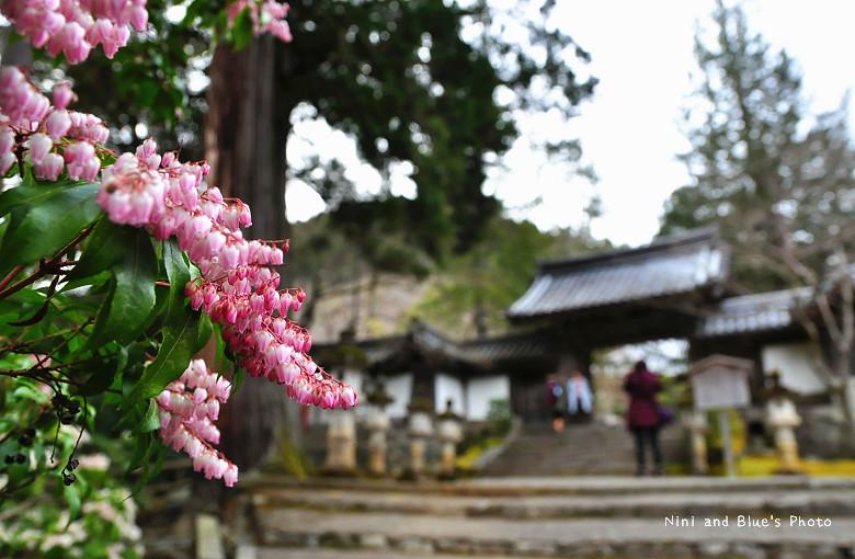 日本京都高雄西明寺06