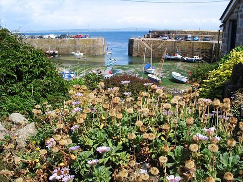 Cornwall Summer 2015 (59)