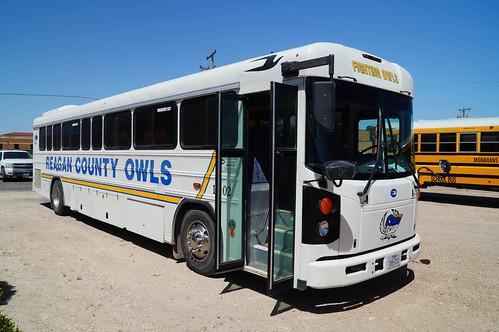 Reagan County Owls Blue Bird All American D3RE #10-02